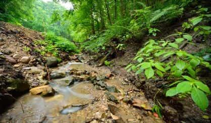 upton-hails-passage-of-national-parks-legislation
