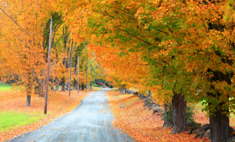 """county-road-agencies-issue-2020-""""don't-miss""""-fall-color-routes"""