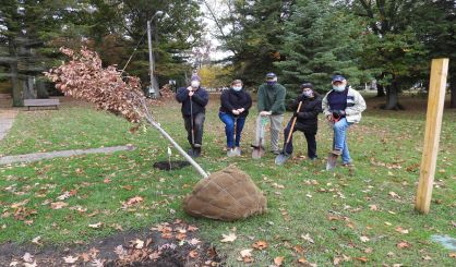 south-haven-rotarians-plant-trees